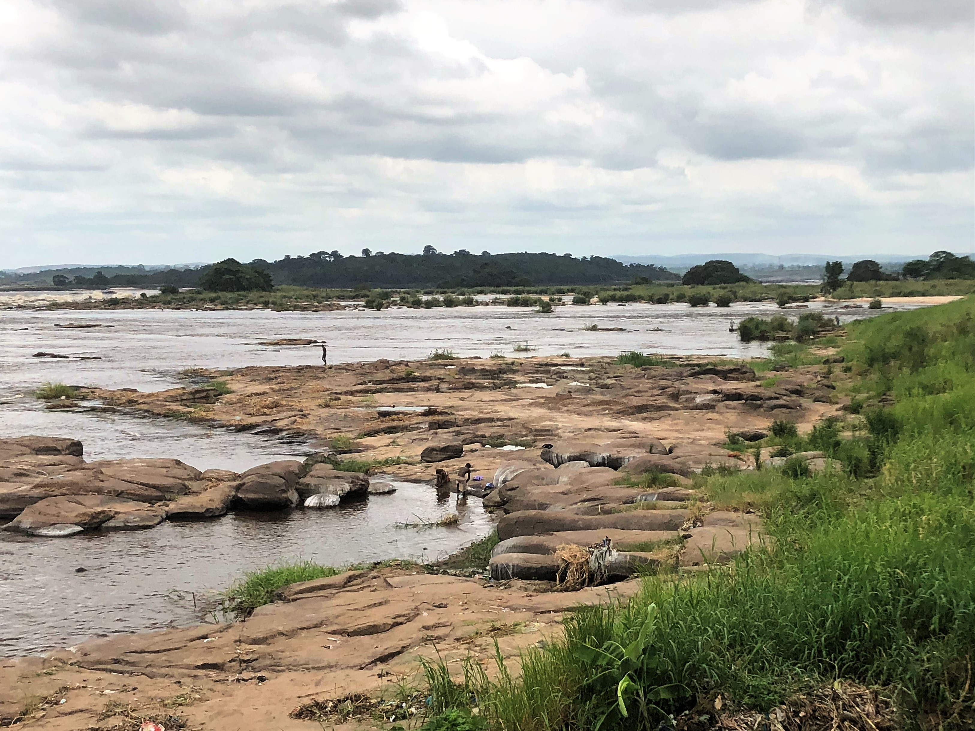 Congo riverbank