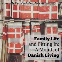 Family Life and Fitting In - A Month of Danish Living